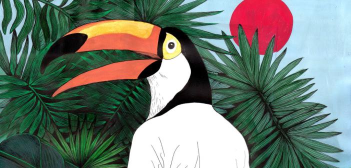 ramo-ep-tout-ira-bien-interview-toucan-musique-pop-tropicale