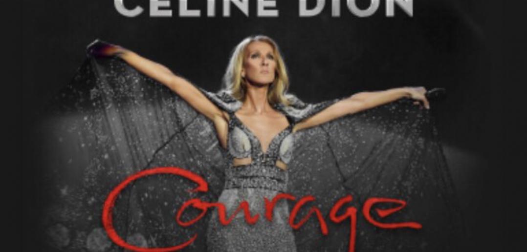 Céline Dion : des rumeurs sur un concert à la Défense Arena en juillet 2020 1